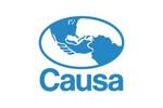 Causa_15